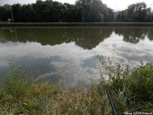 Canal de Pagny-sur-Moselle (54) 05